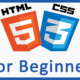 The HTML Tutorial for beginners