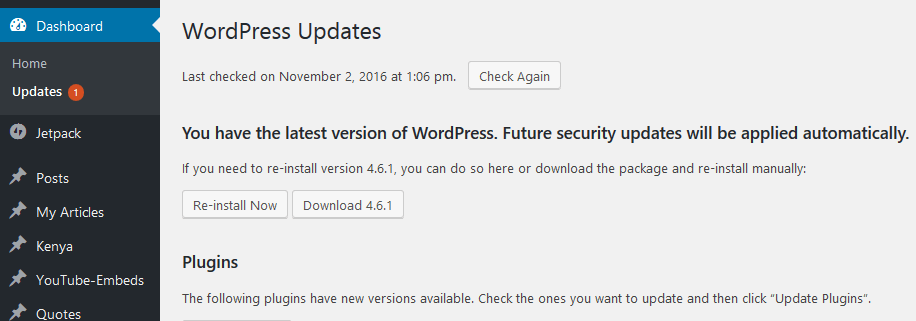 WP Core has no update