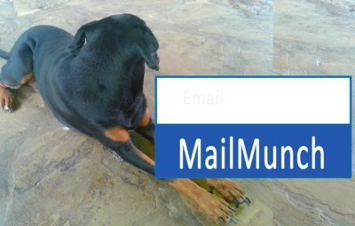 How to Capture Leads with MailMunch on your website