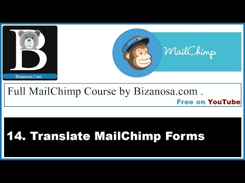 14 How to Translate Mailchimp forms