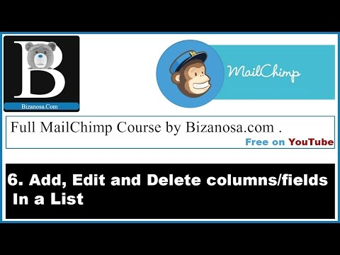 6 Mailchimp list fields and merge tags