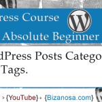 9. About WordPress Post Categories and Tags