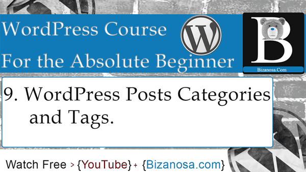 WordPress Post categories and tags