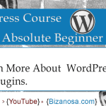 18. Much More about WordPress Plugins