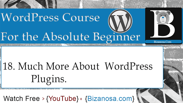 WordPress plugins WordPress video tutorials