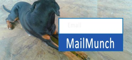 FREE MailMunch Course for beginners – For Email Marketing