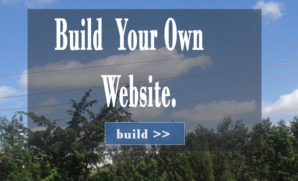 Top 7 Build Your Own Website Courses Bizanosa