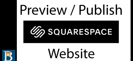 Publish / Preview Website in Squarespace
